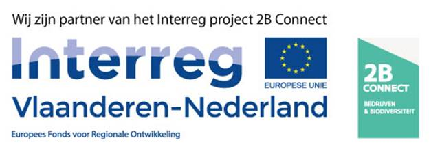 Logo 2B Connect en Interreg