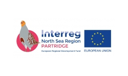 Interreg partridge